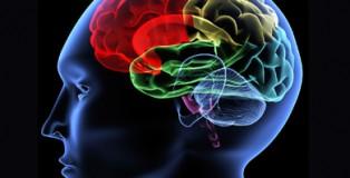 Neurological-Disorder