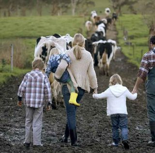 top tips for keeping kids safe on the farm