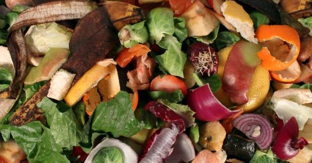 New campaign urges households to reduce food waste