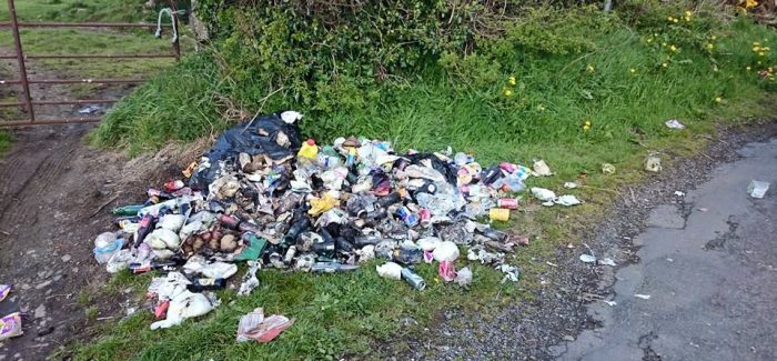 Extra funds and resources made available in crackdown on illegal dumping