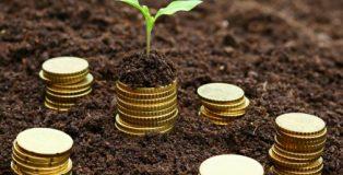 microfinance-505x306_c